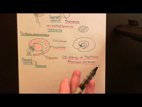 Amphetamine and Methamphetamine Part 4