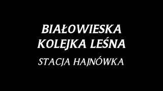Białowieska Kolejka Leśna - Stacja Hajnówka