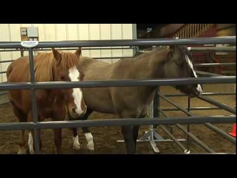 Brooks Livestock Emergency Trailer