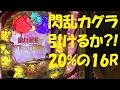 【+143】閃乱カグラ[Dのぱち族+/ディーステーションTV]出演:おまめサンシロー、ブーメラン学園杉村
