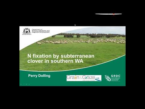 Nitrogen fixation by subterranean clover | Department of Primary Industries and Regional Development