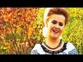 Download Niculina Stoican:  Am pierdut in viata multe