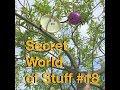 Secret World of Stuff No. 18