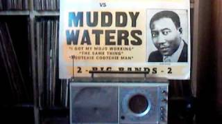 "Muddy Waters - "" Train Fare Home """