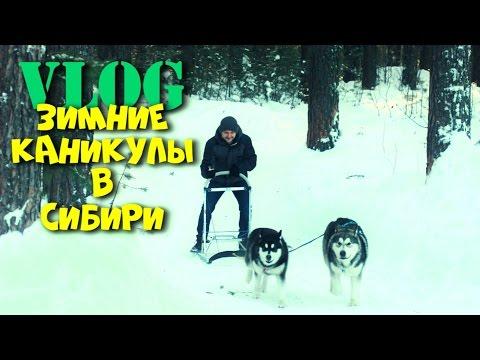 при небольшой зимние каникулы в украине того существуют специальные