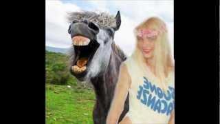 Il cavallo di Cicciolina - foto shock