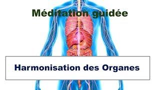 Harmonisation des Organes