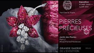 """""""Pierres précieuses"""" Exposition au Muséum national d'Histoire naturelle"""