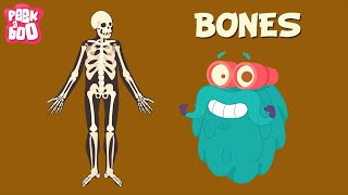 Bones | The Dr. Binocs Show | Learn Series For Kids
