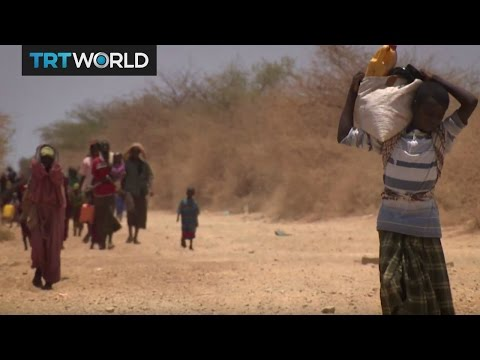 Somalia Drought: More families continue to seek humanitarian aid