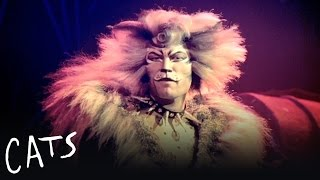 The Rum Tum Tugger | Cats the Musical