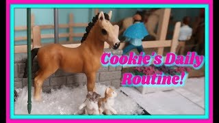 🐴A Day In The Life Of Cookie The Schleich Horse!🐴A Daily Horse Routine! 🐎First Day TV🐎