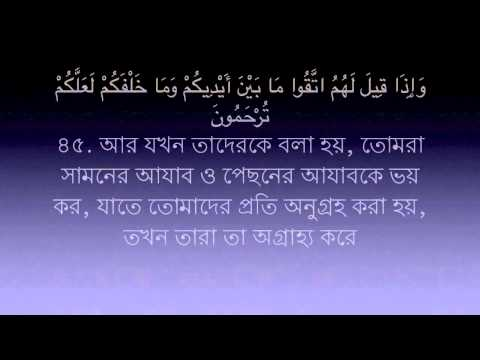 sura-yasin-36-bangla-translation-(reciter-:-mishary-alafasy)