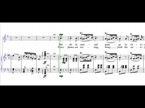 Stride la vampa - Em (PIANO & VOICE)
