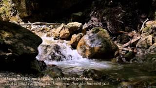 Schubert: Danksagung an den Bach SUBTITLES English Deutsch, Song of Thanks to the Brook +Nature Film