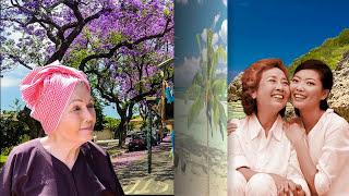 Mẹ: NV NS Nguyễn Đình Toàn- NLD. SS: Trần Ngọc