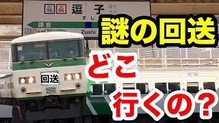 185系 快速鎌倉紅葉号の回送列車はどこへ行く?謎の列車を追跡してみた。