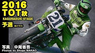 2016 秋 テイスト・オブ・ツクバ 予選 | PIX by Shogo NAKAO+SIGMA 150-600mm ♪