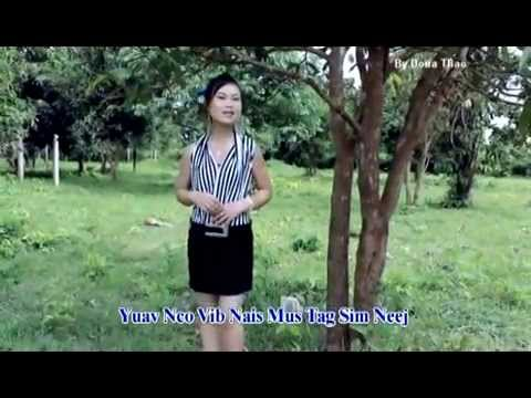 Hmong new song 2014 nkauj iab lauj   Nco vibnais thumbnail