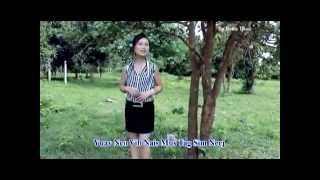 Video Hmong new song 2014 nkauj iab lauj   Nco vibnais download MP3, 3GP, MP4, WEBM, AVI, FLV April 2018