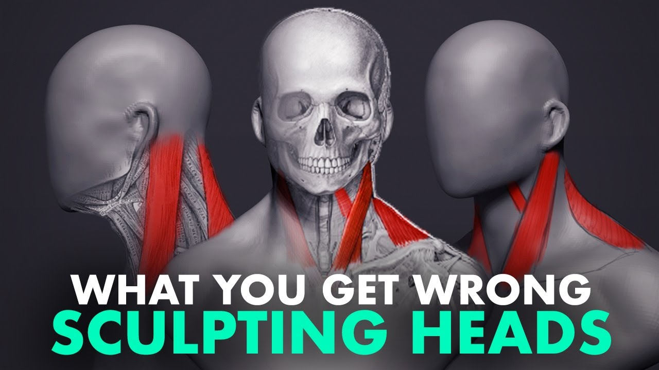 Download What You Get Wrong About Sculpting Heads