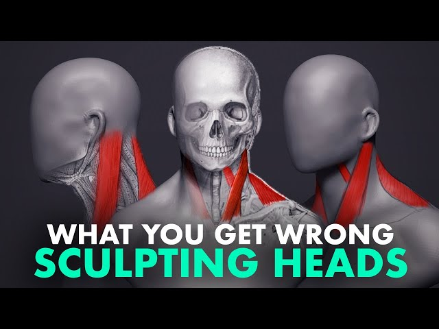 What You Get Wrong About Sculpting Heads