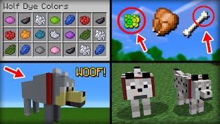 minecraft 20 things you didn t know about the wolf