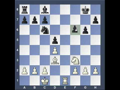 WCA Chess Fall 2019 12PM and 2PM Video
