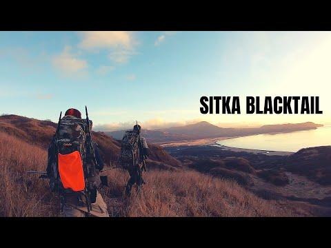 Sitka Blacktail Deer Hunting: Kodiak Island