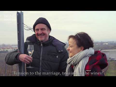 Artists of Austria Episode 4, Weingut Gerhard & Brigitte Pittnauer: The Art of Self Expression