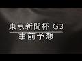 【競馬予想】 東京新聞杯 G3 2017 事前予想