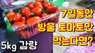 [39살의 다이어트] 7일간 방울토마토만 먹는다면? 운…
