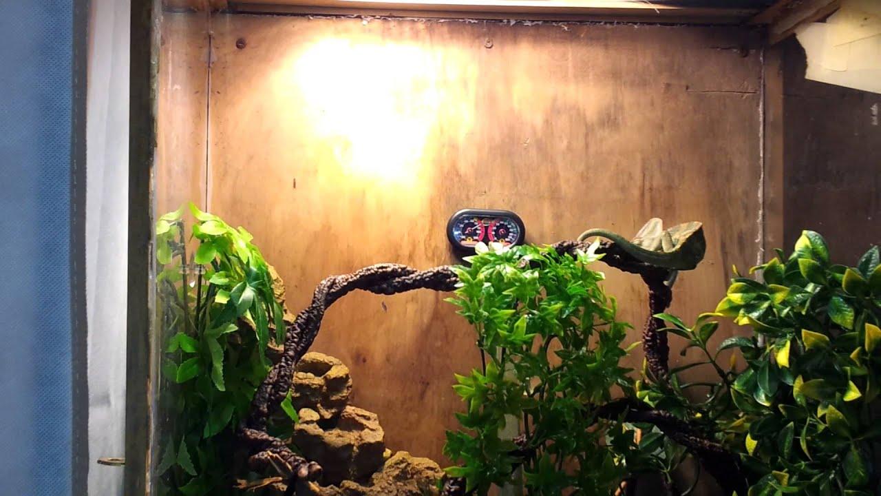 Terrario del camaleon de velo original youtube - Como construir un terrario ...
