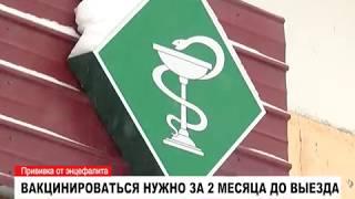 На Ямале уже можно сделать прививку от клещевого энцефалита