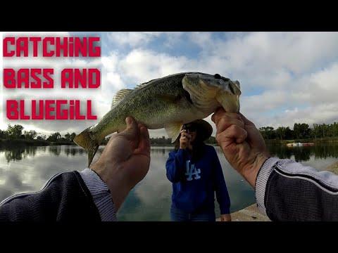 Fishing At El Dorado Park In Long Beach: Fish On During Tutorial