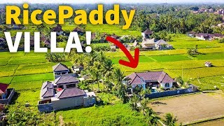 Living in Bali - RICE PADDY VILLA TOUR | Balinese House in Indonesia $77 Per Night!