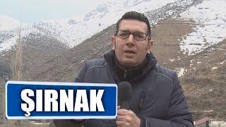 Şırnak Uludere'deki Düğünler - Mert Savaş'la Cennet Köşeler 2017 Video