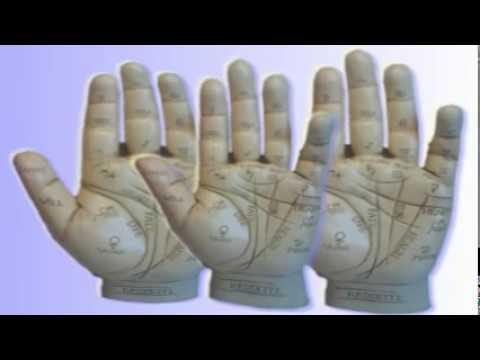 Inside Palm Reading Secrets Revealed