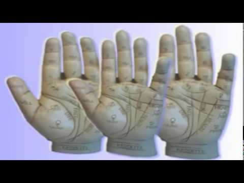 Palm Reading - Discover A Hobby