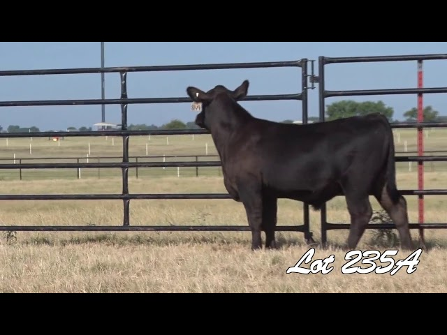 Pollard Farms Lot 235A