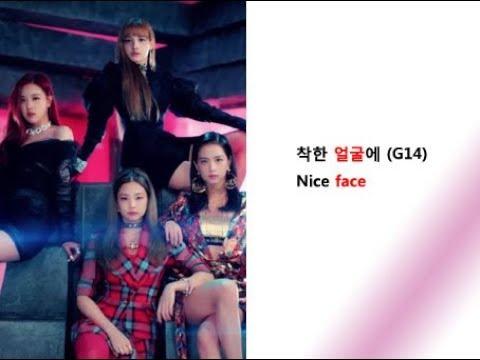 BLACKPINK- 뚜두뚜두 ( DDU-DU DDU-DU ) Lyrics Video For Korean Learners