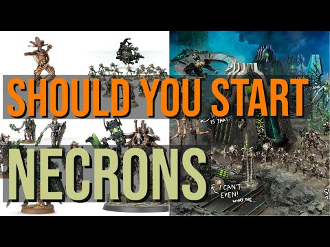 Which Army Should You Play | NECRONS?