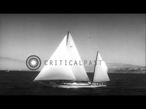 Yachts takes off during the Transpacific Yacht Race from Los Angeles, California ...HD Stock Footage