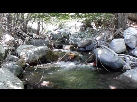 Epic Trout Fishing in San Gabriel Mountains-Best Video HD!