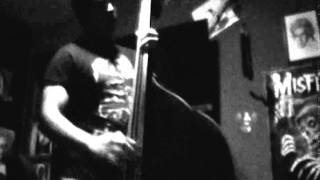 The Skrunch - Lady Ghost Lover (Upright Bass Cover)