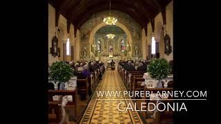caledonia pure blarney