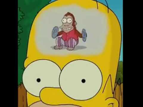 У Гомера в голове обезьяна