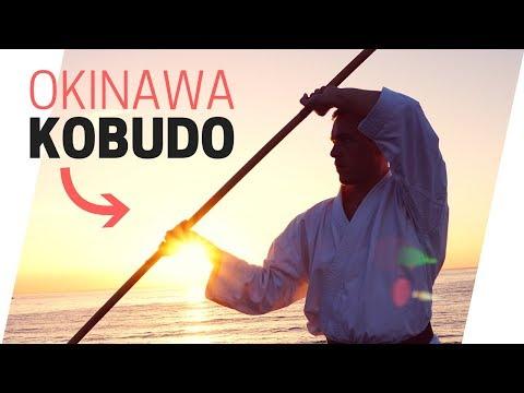 OKINAWA KOBUDO KATA | Sueyoshi/Shishi no Kon — Jesse Enkamp