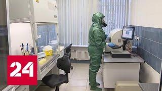 Смотреть видео В России разработаны экспресс-тесты для выявления коронавируса - Россия 24 онлайн