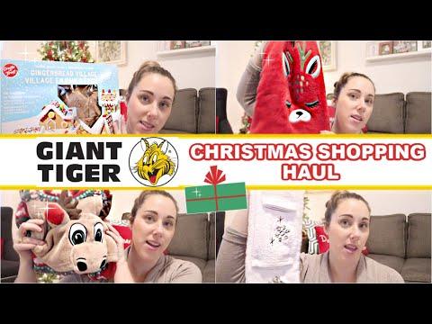 Christmas 2019 | Giant Tiger Holiday Shopping Haul